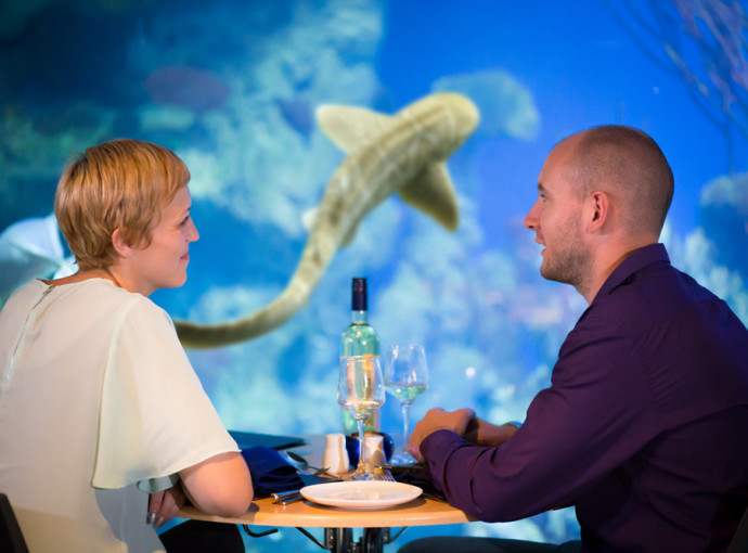The Deep restaurant offers special September discount feature image